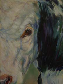 cow closeup oil painting