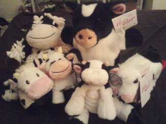 cow collectibles group